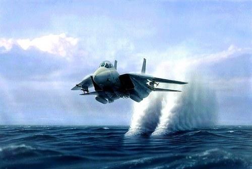 F1420tomcat2013