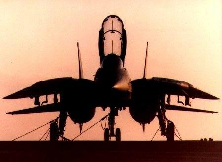 F1420tomcat2014